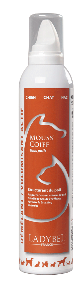 MOUSS'COIFF, Volumen Schaum, 300 ml