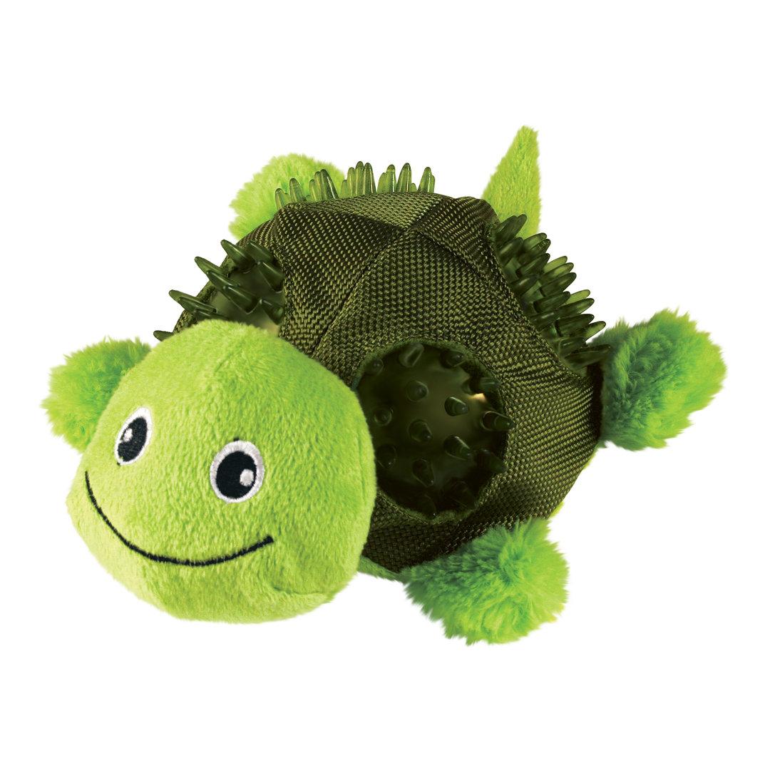 Shells Turtle S