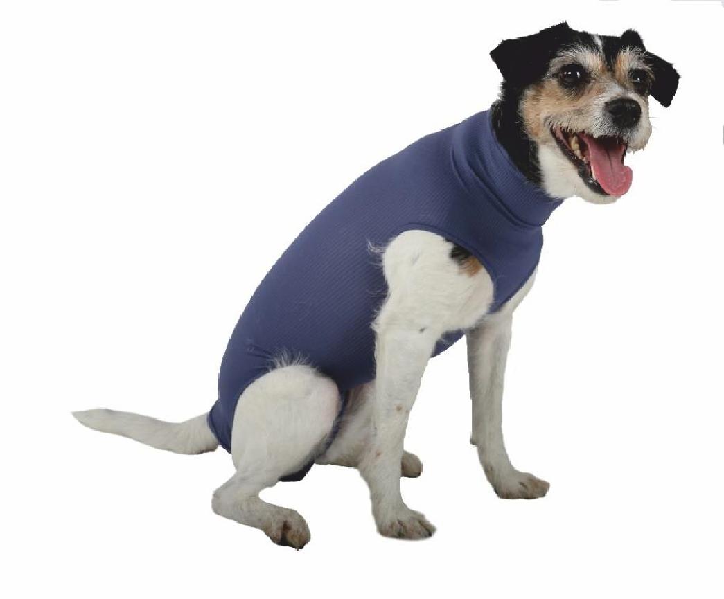 DOG BODY ohne Beine, blau, 3XS - XXL für Hündinnen und Rüden