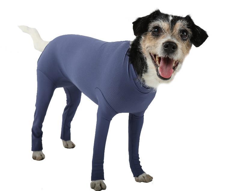 DOG BODY mit 4 Beinen, blau, 3XS - XXL für Hündinnen und Rüden