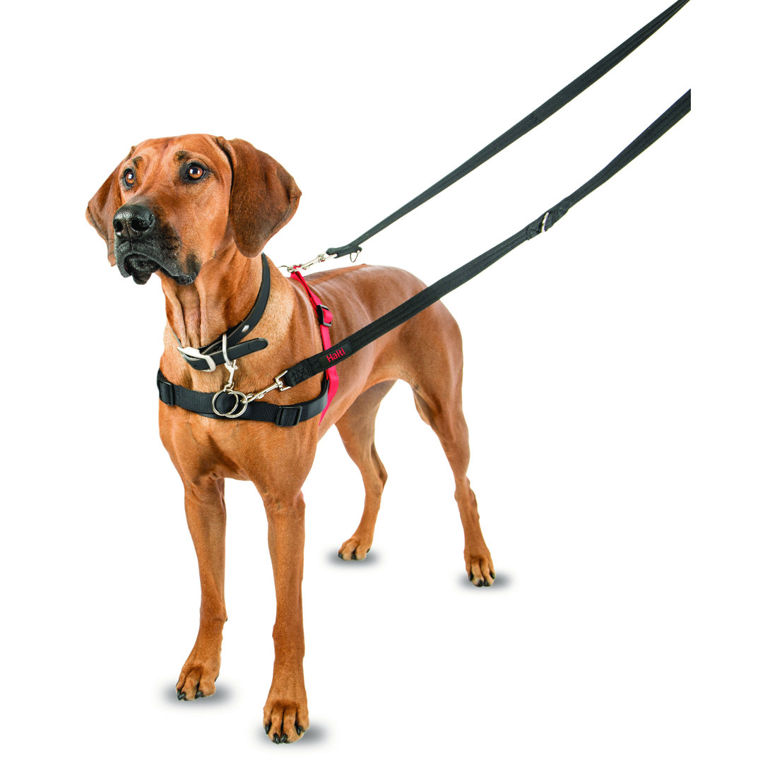 Halti Front Control Harness Black/Red Large